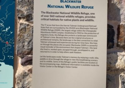Blackwater National Refuge