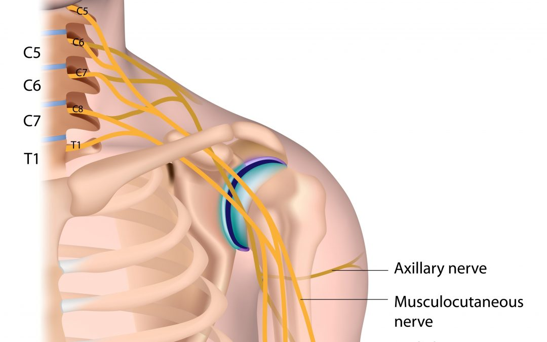 Shoulder Dystocia And Two Possible Injuries It Can Cause